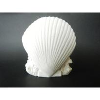 Stone Carved Shell - Tominiko Kama Stone Carver