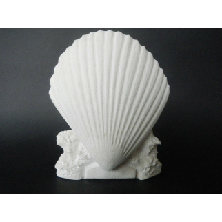 Stone Carved Shell